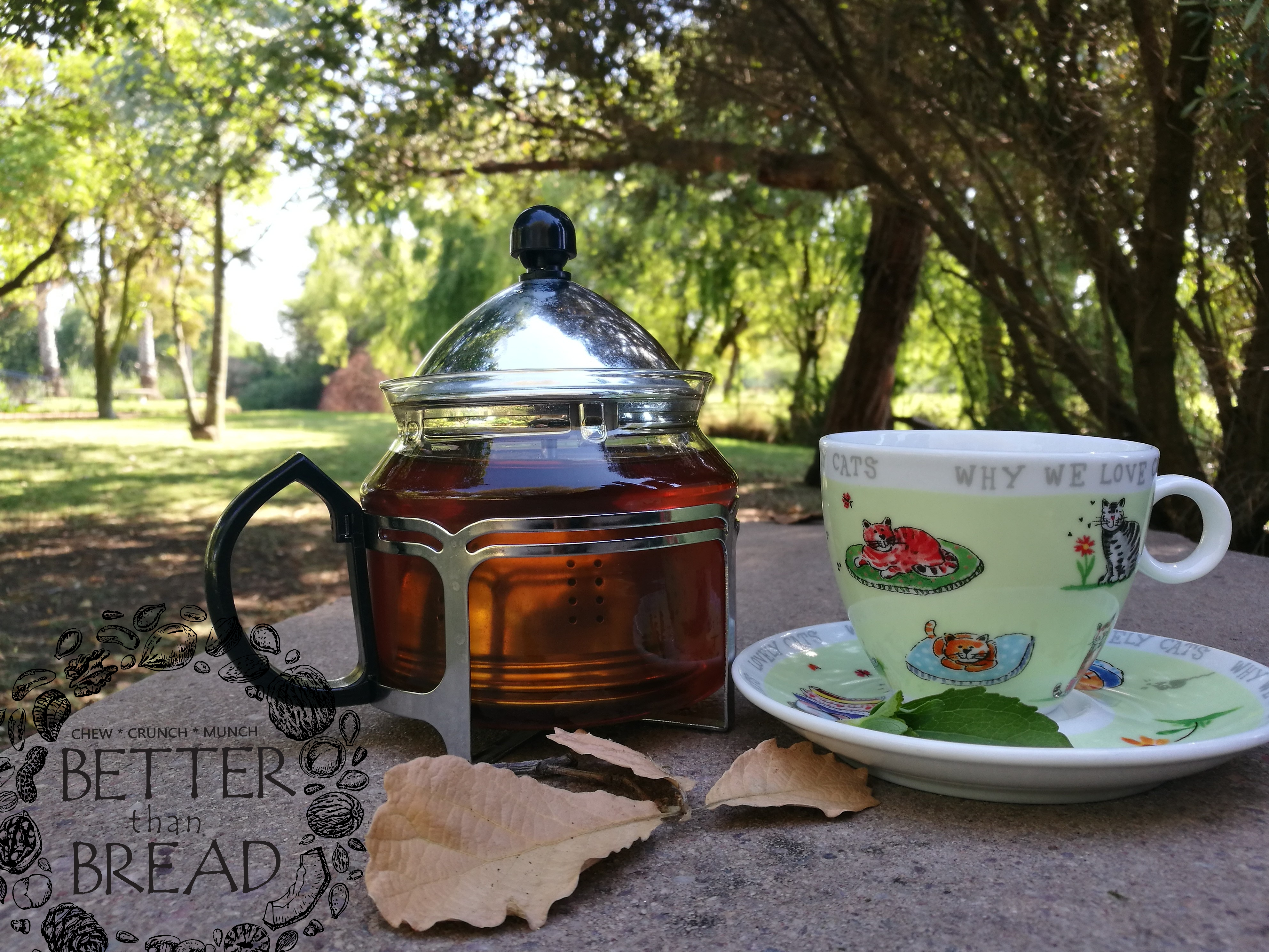 Better Than Bread Pot of Tea made with real green leaf stevia